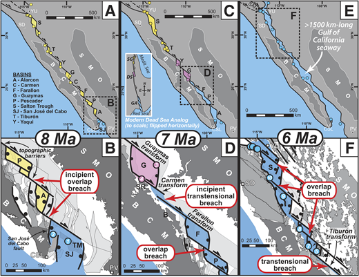 GIS-based reconstructions at 8, 7, and 6 Ma showing terrestrial (yellow), evaporitic (pink), and marine (blue) basins and locations of data in colored circles in the Gulf of California (see the Data Repository [see footnote 1]). Detailed maps (B, D, F) of key breaching areas for each reconstruction show rigid microplates (dark gray), and faulted onshore (medium gray) and offshore (light gray) continental crust. Abbreviations as in Figure 2; panel C inset: Medit.—Mediterranean; DS—Dead Sea; GA—Gulf of Aqaba; SG—Sea of Galilee.