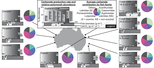 """Summary of fish carbonate production models for nine coral reef systems in Australia, with outputs averaged across multiple sites in each system. Horizontal box plots show production rate and fish biomass (median values within inter-quartile ranges). Vertical box plots show percent abundance of each carbonate polymorph (median values within inter-quartile ranges), overlaid on a solubility gradient spanning relatively stable low-Mg calcite (LMC) to highly unstable Mg-rich amorphous calcium carbonate (ACMC). For corresponding polymorph codes (see legend), """"C X"""" refers to calcite with X mol% MgCO3. Pie charts show mean CaCO3 contributions (as percentages of total production) for each teleost family contributing >5% in any one reef system; less-significant families being grouped as 'others'."""