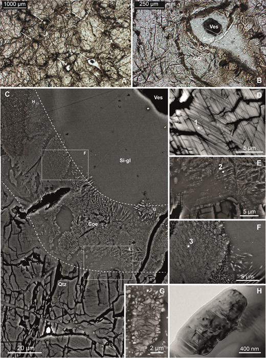 """Symplectic regions in shocked sandstone (sample L23) from Kamil Crater, southwest Egypt. A: Optical micrograph showing symplectic regions (dark opaque regions with, in places, transparent colorless cores of vesicular silica glass; arrows) localized around intensely fractured quartz crystals. B: Optical micrograph of the symplectic region imaged in the following panels. Qtz—quartz, Coe—coesite, Si-gl—silica glass, Ves—vesicle. C: Mosaic of backscattered electron (BSE) images showing a representative section of the symplectic regions within shocked quartz grains. From bottom to top, the dashed lines limit the host """"quartz zone"""" consisting of strongly shocked quartz grains bearing planar deformation features (PDFs), the """"coesite zone"""" dominated by polycrystalline domains of microcrystalline coesite set in silica glass, and the vesiculated """"silica glass zone"""". D: Angular-selective BSE image of a quartz grain (Raman spectra #1 in Fig. 3) with two sets of PDFs from the """"quartz zone."""" E: BSE image of the transition between the quartz zone and the coesite zone. PDFs in quartz abutting silica glass in the coesite zone are progressively widened. Tartan-like polycrystalline domains within this transition domain consist of quartz-coesite intergrowths (Raman spectra #2 in Fig. 3) set in silica glass. Note the parallelism, despite some mobilization, between the orientations of the coesite-quartz intergrowths and the PDFs in quartz. F: BSE image of a polycrystalline domains of coesite in the coesite zone (Raman spectra #3 in Fig. 3) showing slightly mobilized planar arrangements of microcrystals along two directions at its core (left) and flame-like resorption textures at its rim (right). G: BSE image of polycrystalline coesite domain in silica glass showing resorption textures in the coesite zone. H: Bright-field transmission electron microscopy (TEM) image of an individual rounded coesite grain floating in silica glass showing (010) polysynthetic twinning in the coesite zone. Ph"""