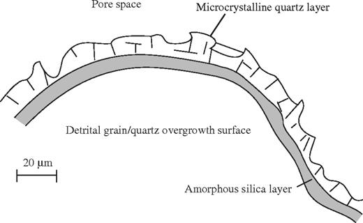 Microstructure of the grains in the Fontainebleau sandstone. The detrital grains with minor amounts of quartz overgrowth (the Fontainebleau sandstone has undergone a minor degree of early quartz cementation) are coated by a layer of amorphous silica. In turn, this layer is coated with a microcrystalline quartz layer.