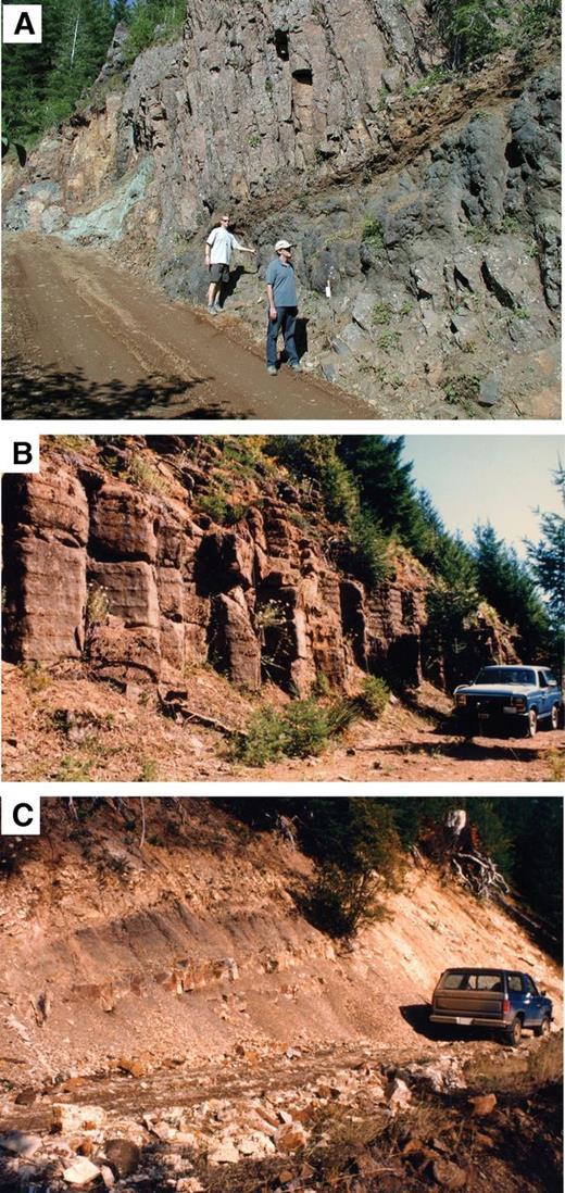 Photos of postaccretion rocks. (A) Subaerial flows of Tillamook Volcanics south of Triangulation Peak, Oregon (unit Tbl, Fig. 6). (B) Regional basalt sill complex, upper Tualatin River gorge, Oregon, intruded into tuff beds and all older units (unit Tidb, Fig. 6). (C) Tuff at base of Yamhill Formation on ridge above North Fork Trask River, Oregon (unit Tyt; CP12b–13a fossil zone; 46.5 ± 0.5 Ma U-Pb age, Fig. 6).
