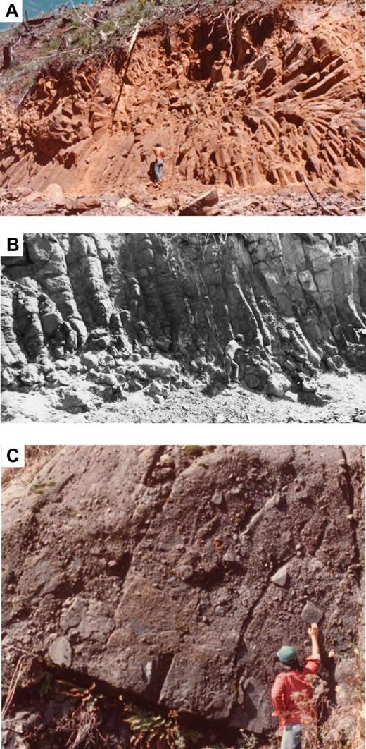 Submarine flows and sills in the Crescent Formation, Willapa Hills (southwest Washington). (A) Giant feeder tube in pillow basalt (unit Tcpb, Fig. 4). (B) Columnar jointed sheet flow with pillowed feet (unit Tcpb, Fig. 4). (C) Submarine basaltic debris flow deposit (unit Tcbr, Fig. 4).