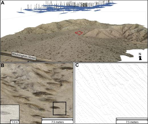 (A) Perspective view of the final Photoscan digital elevation model and draped orthophoto from the Washington Street site (San Andreas fault). Camera positions are shown as blue rectangles and the normal to each photograph is marked by a black line. (B) A close-up view of the low-quality structure from motion point cloud (several hundred points/m2) inside the red polygon in A. At greater magnification (inset), the individual colored points are visible. (C) The B4 airborne LiDAR (light detection and ranging) point cloud (2–4 points/m2) in the same region as B, colored by intensity and clearly showing the individual scan lines of the survey (Bevis et al., 2005).
