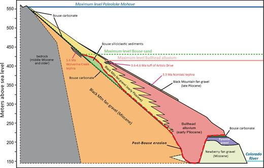Schematic diagram of the valley axis and Black Mountain piedmont in northern Mohave Valley. Levels of maximum Bouse inundation (blue line), maximum Bouse sand deposition (green dashed line), post-Bouse, pre-Bullhead erosion (red line), and maximum Bullhead aggradation (tan line) are shown against preserved local and river deposits.