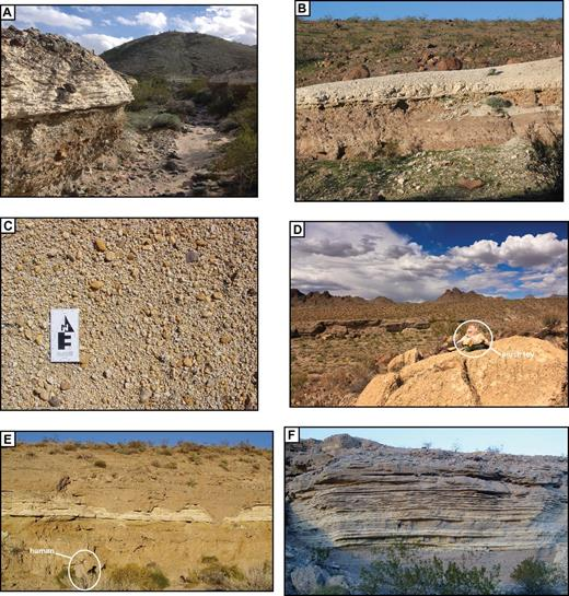 Examples of the basal and perimeter Bouse carbonate deposits. (A) 1-m-thick basal carbonate over oxidized fanglomerate at ∼180 m above sea level (asl), Park Moabi area. (B) 0.5–1-m-thick basal carbonate over oxidized fanglomerate layers at ∼400 m asl, north of Lost Cabin Wash in Cottonwood Valley. (C) Oxidized rounded locally derived gravel form a surface lag above basal Bouse carbonate at ∼490 m asl, northern Mohave Valley. (D) Massive tufa deposit on bedrock at 552 m asl, Silver Creek (∼10-cm plush toy for scale). (E) Exposure of basal carbonate over oxidized fanglomerate at 530 m asl, Silver Creek (note person for scale); overlying indurated fanglomerate is on erosion surface cut on Bouse deposits, including small channels cut into and through the Bouse deposits. (F) Farther east at 550 m asl, white Bouse limestone beds are on local fanglomerate and are interbedded with tan local sand and gravel fanglomerate, with more gravel higher in section (section is 8–10 m thick) These deposits clearly record interplay between local tributary deposition, quiet-water lacustrine deposition, and probably wave reworking of the clastic deposits.