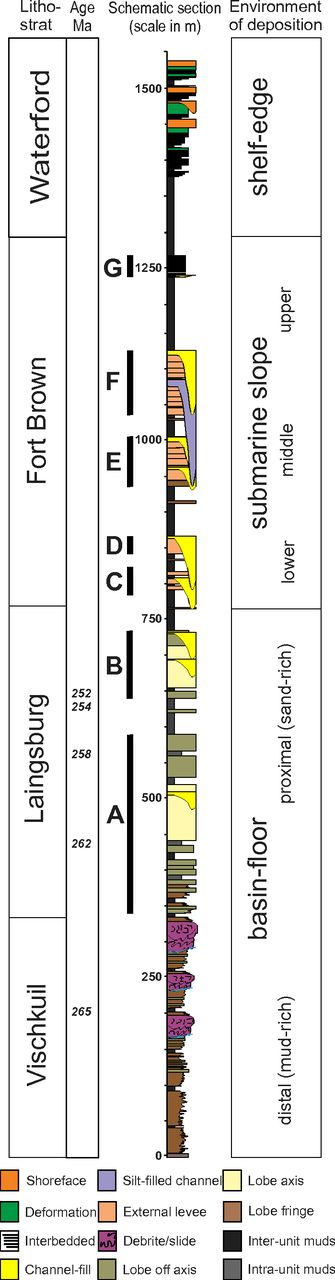 Schematic stratigraphic (litho-strat is lithostratigraphy) section of the Ecca Group in the Laingsburg area (Karoo Basin, South Africa). The overall shallowing-upward trend records the long-term progradation of the Karoo Basin margin to the northeast. Units C–F in the Fort Brown Formation are the focus of this study. Ages are from Fildani et al. (2009).