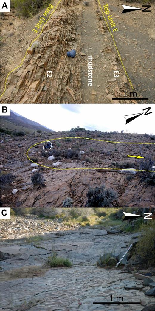 Representative photographs of the characteristics of the interpreted sediment bypass–dominated tract in Unit E (the top surface of E3) in the Floriskraal syncline. (A) The extensive but thin E2 and E3 succession between updip slope channel levees and downdip lobe complexes, characterized by thin-bedded ripple-laminated deposits with multiple scour surfaces. (B, C) The top surfaces of the E3 lowstand systems tract in the sediment bypass–dominated area, including megaflutes (edge marked by yellow dotted line, arrow marks paleoflow direction), mudstone rip-up clast horizons, and remobilized sediments. Circled object in B is 50-cm-high ruc-sac.