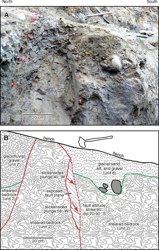 Photograph (A) and line drawing (B) of slickensides in bedrock on one of the primary traces of the Darrington–Devils Mountain fault zone exposed in east wall of Boundary trench; see Figure 6 and Supplemental Figure S3 (see text footnote 3) for unit descriptions. Direction of plunge indicates right-lateral oblique sense of slip.