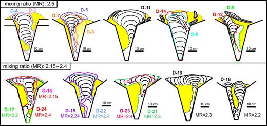 Shapes and internal fabrics redrawn from vertical sections of the experimental bodies. Note that outlines of similar experiments are displayed as superposed on each other and are marked by contours of different colors. Mixing ratio corresponds to the weight proportion of hemihydrate powder and water used for preparation of the plaster of paris in the experiments.