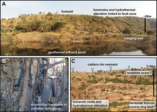 Photographs of major volcanic and tectonic structures on Aluto. (A) The Artu Jawe fault scarp viewed from the west (located in Fig. 2A). Along the escarpment fumaroles are visible at the base of the structure and there is evidence of hydrothermal alteration at the surface. (B) Subvertical foliations developed in obsidian in crush zone of Artu Jawe fault scarp (located in A). Hammer is 30 cm in length. (C) The caldera wall of Aluto, identifying fumarole vents (red circles) and hydrothermal alteration at the base of the structure. Asterisk in the center of the fumarole field indicates a zone that does not show any surface alteration and has low ground temperatures and CO2 gas flux relative to the surroundings (see text).
