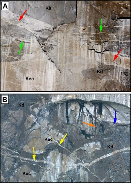 (A) Photograph showing older, larger, steeper-dipping aplite dikes (red arrows) cut by younger, thinner, subhorizontal aplite dikes (green arrows). The aplites cut Leaning Tower Granite (Klt) at the top of the photograph, El Capitan Granite (Kec) on the bottom, and diorite of North America (Kd) on the right. This location is ∼75 m up and left of The Brain (Fig. 3). The large dike is ∼2 m thick. Photograph courtesy of Derek Ferguson. (B) High-resolution photograph of the area around El Capitan Tree (orange arrow, Fig. 3) showing aplite crosscutting relations and sense-of-separation indicators. The first series (yellow arrows) dip steeply to the north and northeast and are up to 2 m thick. In this area, they display dextral sense-of-separation indicators; whereas in other areas, they are sinistral. The second series (blue arrow) cross the photograph from right to the left, behind the tree. The dikes primarily cut El Capitan Granite (Kec) and diorite of North America (Kd). The areas of El Capitan Granite that appear to be isolated blocks are the host rock to the diorite of North America dike that appear isolated due to the orientation of the erosional surface. The tree is ∼25 m tall. Photograph courtesy of www.xRez.com.