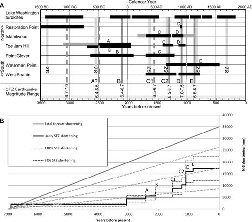 (A) Paleoseismic record of Seattle fault zone (SFZ) earthquakes over the past 3500 yr, with large Cascadia subduction zone earthquakes also shown. The horizontal black bars show the range of time for documented earthquakes at each of the paleoseismic sites and inferred from turbidite deposits in Lake Washington. Vertical bars show inferred earthquakes on the Seattle fault (dark gray; dashed where uncertain), and on the Cascadia subduction zone (SZ; light gray). Inferred magnitudes of the earthquakes are listed at the bottom of the graph. See text for explanation. (B) Total north-south shortening across the Cascadia forearc based on geodetic data compared to accumulated shortening from known Seattle fault zone (SFZ) earthquakes. The earthquakes correspond with those in part A. Gray dashed, sloping lines show 75%, 50%, and 25% of the total forearc shortening inferred from geodetic data.