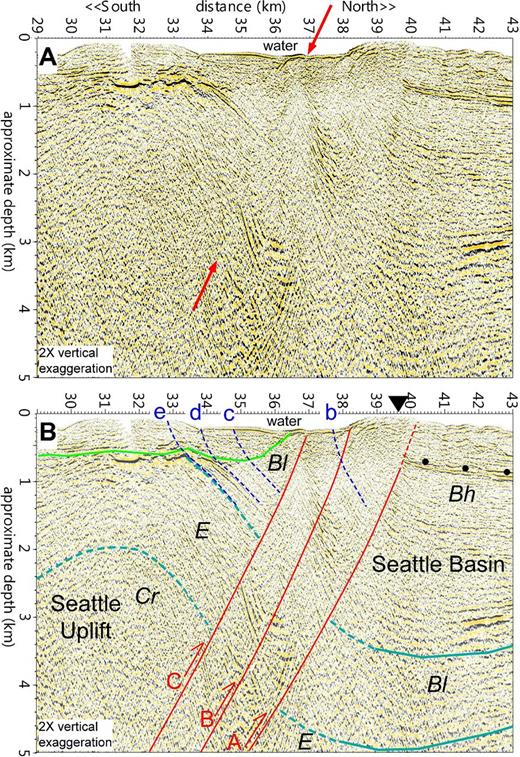 SHIPS PS-1 profile from western Puget Sound showing the Seattle fault zone separating the Seattle basin from the folded strata in the Seattle uplift (Fisher et al., 2006). Lines and symbols are the same as in Figure 2. Red arrows in A show a possible fault plane reflection.
