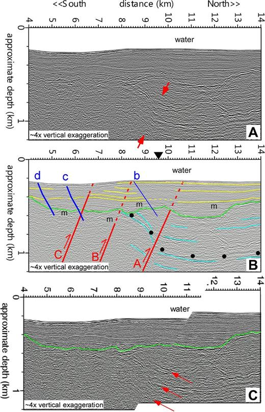 (A) Profile P42 from central Puget Sound. Red arrows mark the folded and truncated reflectors at fault A. (B) Interpreted seismic profile. Lines and symbols are the same as in Figure 5. (C) Seismic profile cut along fault A with ∼83 m of slip removed, showing the alignment of prominent Quaternary and Tertiary reflectors (red arrows) below the unconformity.