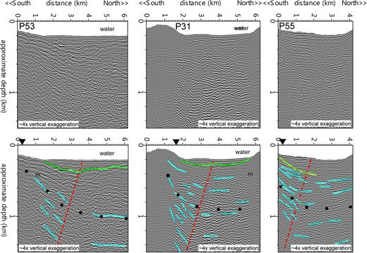 High-resolution seismic profiles P53, P31, and P55 from the east side of Puget Sound near the entrance to Elliott Bay. See Figure 4 for locations. Turquoise lines mark prominent reflectors in the Quaternary and Tertiary strata, and the green line is the unconformity at the base of latest Pleistocene and Holocene deposits. Red dashed lines show the approximate position of the axial surface forming the deformation front as interpreted from the change from predominantly north-dipping reflector segments on the south to predominantly flat reflector segments on the north. Black dots indicate estimated boundary between Tertiary and Quaternary strata (Johnson et al., 1999). Black triangles are the location of the deformation front in Blakely et al. (2002).