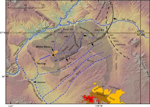 Possible course and extent of White Mesa paleodrainage (dashed blue lines). Shaded pattern is inferred former extent of eroded Cretaceous terrain based on published previously cited structure contour maps. Paleochannels: np and sp—north and south paleochannel; nep 1—northeast paleochannel 1; nep 2 and 3—northeast paleochannel 2 and 3. Headwaters region in Navajo Mountain area, Monument Valley, and parts of Chinle Valley removed during regional denudation beginning after 2 Ma. San Juan Mountains piedmont inferred from Cather et al. (2008). Distribution of Bidahochi Formation is mostly from Dickinson (2013).