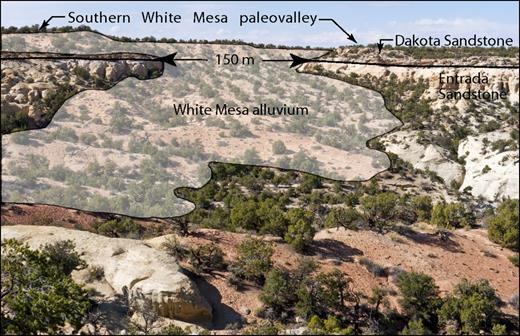 View to north of south paleochannel exposed along rim of White Mesa where paleochannel entered southern White Mesa paleovalley at skyline (Table 1, site 8; Fig. 5). Subvertical channel walls are 150 m apart. Alluvium overtops paleochannel margin spreading over Dakota Sandstone and Mancos Shale. Exotic volcanic and metamorphic clasts are present in two gravel beds.