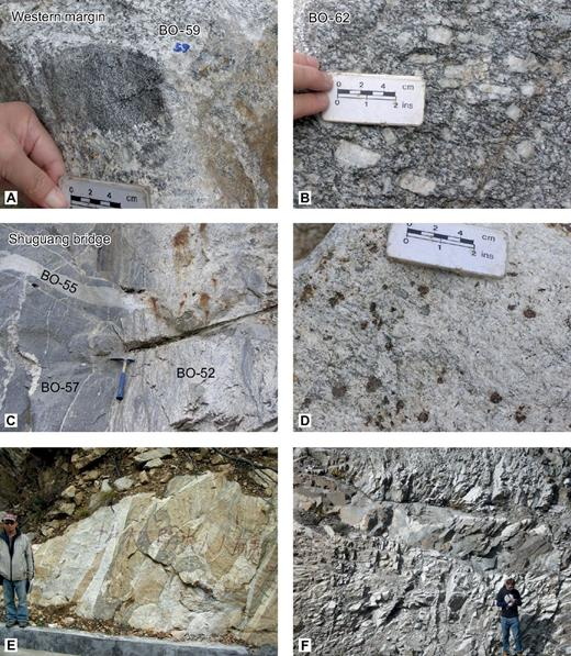 Field outcrop photos, Kangding section. (A) Sample BO-59 biotite granite with enclave of earlier granodiorite, from the western margin of the Gongga Shan batholith above Kangding new airport. (B) Sample BO-62, a biotite + K-feldspar monzogranite typical of much of the batholith. (C) Shuguang bridge locality, Kangding road. Biotite monzogranite (BO-57) has been intruded by a second phase more leucocratic biotite ± muscovite granite (BO-52) with migmatitic textures (schlieren of melanosome). Both lithologies are cut by a later undeformed pegmatite (BO-55). Hammer is 30 cm long. (D) Late garnet leucogranite. (E) Complex intrusive phase of later leucogranite (pale) intruding earlier biotite granite. (F) Biotite microgranite sill, the youngest phase of magmatism in the Kangding profile.