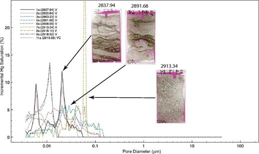 Plot of incremental mercury saturation versus pore-throat diameter for samples in the micropore-throat–dominated group. Scans of thin sections from selected samples are shown, in which porosity is highlighted by red-dyed epoxy.