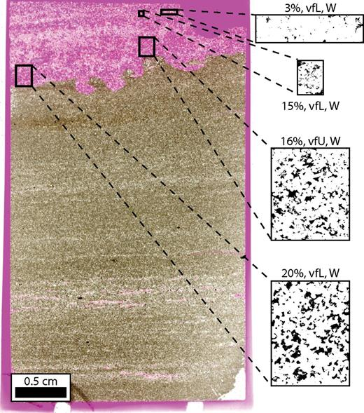 Thin section and binarized images of regions illustrating variation in intergranular volume (IGV) in sandstone layer in a mixed sandstone-mudstone sample. IGV in analyzed regions varies from 3% to 20%. The variation is not controlled by primary texture, as grain size and sorting are similar for the four regions. The most likely causes of the variation in this sample are either the presence of a cement (later partially removed by dissolution) that filled pores and prevented compaction where present, or variable pressure solution as a function of phyllosilicate distribution (low IGV regions have more phyllosilicates in this sample). Sample 2953.73 (900.3 m). Abbreviations: vfU—very fine upper, vfL—very fine lower, W—well sorted.