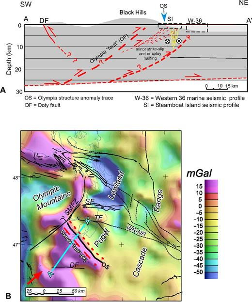Shallow geophysical imaging of the olympia anomaly an enigmatic a cross section showing a hypothetical model arrangement of tectonic features associated with the fandeluxe Images