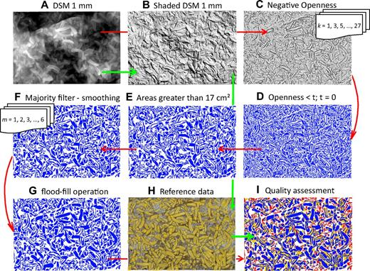 Automated method for individual shell detection shown on portion of data 2 m × 3 m. (A) Generated DSM from 3D point cloud data ranging from black (0) to white (19 cm); (B) Lambert shading of DSM used for interpreting reference data (green path); (C) negative openness derived from DSM for different kernel sizes (red path); (D) binary raster where value 0 is white background and 1 is blue detected object; (E) binary raster after eliminating min. areas; (F) majority filter size m = 6 (13 mm × 13 mm); (G) flood-fill operation; (H) manually digitized individuals overlie orthophoto; (I) quality of detection, see Fig. 13A.