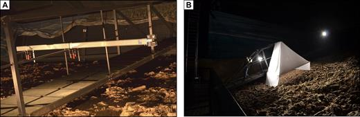 (A) The mobile bridge; 3D capturing of the exposed oyster reef surface using stable terrestrial laser scanning (TLS) positions. The movable bridge enabled contactless access across the reef and detection of the surface from a height of ∼2.5 m. (B) A special light tent was constructed and illuminated simultaneously from several sides with studio spots to achieve a homogeneous illumination over the entire reef.