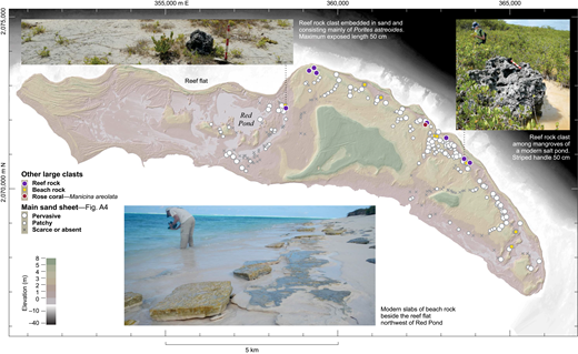 Distribution and examples of boulders of reef rock and beach rock.