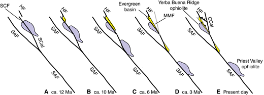 Schematic representation of the opening of the Evergreen basin as a pull-apart basin in the wake of the right step from the Silver Creek fault to the Hayward fault (Santa Clara Valley, California, USA). The five panels (A–E) show successive stages of basin formation (and overprinting by transpression) and the concurrent dismemberment and dispersion of the once-continuous ophiolite sheet that now exists as the Yerba Buena Ridge ophiolite in the Santa Clara Valley and its cross-fault counterpart at Priest Valley near Parkfield, California. Yellow areas are basins; active faults are shown in black; abandoned or dormant faults are shown in gray. Faults that are about to become active are shown as dotted gray lines. CCal—central Calaveras fault; HF—Hayward fault; MMF—Mount Misery fault; SAF—San Andreas fault; SCal—southern Calaveras fault; SCF—Silver Creek fault.