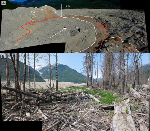 Rheology end-member deposits, Mount Meager landslide. (A) Thick debris, hummocks, and faults of the water-poor phase in area 3. The red line marks strike-slip faults; the white dotted lines delineate block and sheared block facies. (B) Woody debris and dead trees of the water-rich phase downstream of the unaffected Forest Service campsite. White arrow indicates the direction of movement.