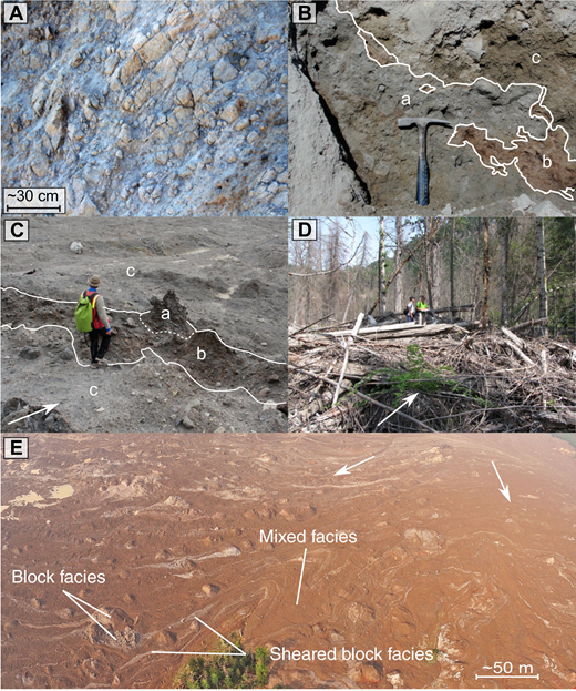 Photographs of typical Mount Meager landslide deposit facies. White arrows indicate flow direction. (A) Block facies. (B) Contacts between mixed facies (a), sheared block facies of gray rhyodacite (b), and sheared block facies of red rhyodacite (c). Hammer is ∼30 cm. (C) A coherent but highly brecciated block (a) disaggregated by shear to form sheared block facies (b). The surrounding material is mixed facies (c). (D) Woody debris facies. (E) Aerial photograph of the debris avalanche deposit in Lillooet River valley taken the morning after the event, before the dam on Meager Creek breached (photo courtesy of D.B. Steers).