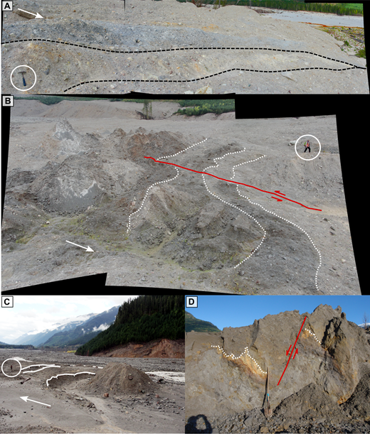 Photographs of typical structures in the Mount Meager landslide debris. White arrows indicate flow direction. (A) Compressional ridges (hammer ∼30 cm). The black lines show thrusts separating compressional ridges of gray rhyodacite and cream-colored, altered sheared block facies. (B) Panoramic view of a shear zone (circled person for scale). The red line marks a strike-slip fault; the white dotted lines highlight lithological markers that show the displacement along the fault. A graben is visible in the foreground. (C) View down Lillooet River valley showing extensional features in the plug; normal fault scarps are indicated by white lines. The graben in front of the circled standing person is perpendicular to the flow direction. Note the runup on the valley side. (D) Normal fault trace exposed in section. White dotted lines here indicate lithological markers. The shovel is 1.5 m in length.