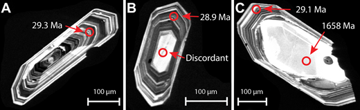 Three different types of zircons from sample CR15. All grains show finely laminated oscillatory zoned domains, interpreted to be of magmatic origin. (A) Zircon represents an example of a grain without a core. (B) Zircon has a small euhedral core thought to be cogenetic with the oscillatory zoned mantle (gave a Cenozoic but highly discordant age). (C) Zircon has a rounded, xenocrystic core.