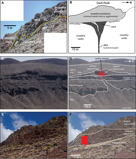 Examples of exposed dike to vent (conduit) transitions. (A) Oblique photo of east-facing side of Dark Peak, a scoria cone remnant (episode 1) showing upper few meters of feeder dike, upward flaring to fill a vent structure, and eruptive products. (B) Simplified sketch of the Dark Peak dike, vent fill, and eruptive products. Both A and B are based upon Harp and Valentine (2015), and are located at 38°06′51″N, 116°10′30″W. (C) Part of the northern crater wall of Lunar Crater maar, which exposed cross section of an episode 4 spatter rampart. (D) Photograph showing thin (∼50 cm) subvertical dike that can be traced to ∼15 m below the base of the spatter rampart. The dike widens to ∼1 m within the upper 2 m of the paleosurface (the top of episode 3 lava), and extends upward and merges with a domain of densely welded agglomerate that grades laterally to bedded, progressively less welded agglomerate, and a lava flow of the same material. Location: 38°23′14″N, 116°03′56″W. (E) Oblique view of an episode 2 scoria cone remnant in the Reveille Range, which was fed by a 30–50-cm-wide, en echelon dike. (F) Photograph showing the dike, which flares to ∼4 m width where it intrudes poorly to moderately welded, bedded agglomerate of the cone. Location: 38°04′16″N, 116°08′03″W.