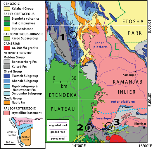 Sedimentary depocenters on Snowball Earth: Case studies from the ...
