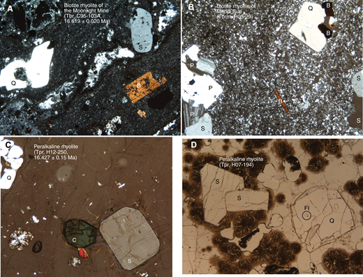 Photomicrographs (cross-polarized light, except D). (A) Biotite rhyolite of Moonlight Mine (Tbr, C95–103A). Highly resorbed quartz (Q), sanidine (S), and biotite (B) phenocrysts in devitrified and moderately silicified groundmass. Horizontal field is 3.2 mm. (B) Biotite rhyolite of Mendi Suri (Tbrm, H05-29). Sanidine, plagioclase (P), and biotite phenocrysts in finely devitrified groundmass. Horizontal field is 3.2 mm. (C) Peralkaline rhyolite lava (Tpr, H12–250, southeastern caldera wall). Vitrophyre with phenocrysts of clear, euhedral sanidine, resorbed quartz, and clinopyroxene (C). Bright spot in lower left is a spherulite. Horizontal field is 2.4 mm. (D) Peralkaline rhyolite lava (Tpr, H07-194, Double H Mountains south of caldera). Partly spherulitically devitrified vitrophyre with phenocrysts of clear euhedral sanidine and quartz. Circle with FI is a fluid inclusion. Similar inclusions in sanidine would be difficult to detect and could measurably affect high-precision 40Ar/39Ar dates. Horizontal field is 3.2 mm.