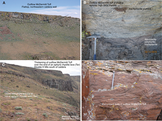 (A) Outflow McDermitt Tuff showing low-amplitude folds at Flattop, northeastern caldera wall. Cliff is ∼10 m high. (B) Outflow McDermitt Tuff at Flattop showing aphyric, high SiO2 phase with sparse lithic fragments and abundantly porphyritic trachydacite pumice over abundantly porphyritic trachydacite phase. (C) Thickening of outflow McDermitt Tuff over the end of an aphyric rhyolite lava (Tar), Double H Mountains south of caldera. Box shows area of D. Cliff in thick part of McDermitt Tuff is ∼60 m high. (D) Recumbent folds in outflow McDermitt Tuff where it thickened abruptly in C. Pencil is 16 cm long.