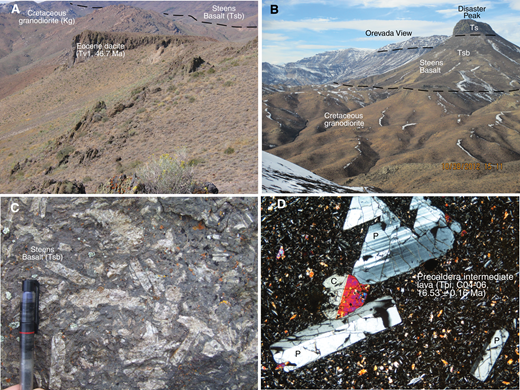 (A) Eocene dacite (Tv1, 46.7 Ma) filling irregular topography developed on Cretaceous granodiorite, northwestern caldera wall. Steens Basalt overlies both dacite and granodiorite in background along flatter surface. Dacite cliff is 10 m high. See Plate 1, Table 1, and text for map unit symbols and descriptions in this and subsequent figures. (B) Steens Basalt overlying Cretaceous granodiorite along planar contact at Disaster Peak and Orevada View. Unit Tsb is ∼300 m thick at Disaster Peak. (C) Steens Basalt with plagioclase phenocrysts as much as 5 cm long in unit Tsb. Observable part of pen is 5 cm long. (D) Photomicrograph, precaldera intermediate lava (Tpi, C04–06, northern caldera wall). Plagioclase (P) and clinopyroxene (C) phenocrysts in matrix of plagioclase, clinopyroxene, Fe-Ti oxides, and finely devitrified glass. Cross-polarized light. Horizontal field is 3.2 mm.