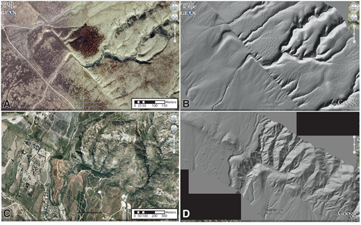 "Imagery given to students for distractor study. (A,B) Wallace Creek at the San Andreas fault (SAF, California, USA [35.271681, –119.827691]) shown in both Google Earth imagery (A) and lidar-derived hillshade (B). (C,D) The SAF near San Bernardino (34.216817, –117.364555) shown in both Google Earth imagery (C) and lidar-derived hillshade (D). The hillshades have significantly less distracting landscape-relevant detail. The lidar image of the Wallace Creek area (B) was slightly modified by executing a ""smart blur"" in Adobe Photoshop software in order to diminish the ""corduroy"" lidar data collection artifact. The resulting image looks slightly softer in the southwestern corner, but no major structures or landscape features were altered by the modification."
