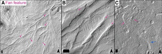 Examples of fan features in Aeolis Dorsa. See Figure 1 for locations. (A) An example of a fan with radiating ridges (pink arrows), which have been interpreted as alluvial fan deposits (e.g., Burr et al., 2009; Kite et al., 2015a). Black arrow points downslope from the fan head (apex) in the upper right. Image is from a mosaic of HiRISE images. (B) Portion of a HiRISE image (ESP_035468_1755) showing two morphologies of fan ridges. The parallel ridges on the right are interpreted here to be debris-flow levees. The ridge with a flat upper surface is consistent with the morphology of an inverted channelized deposit. (C) Portion of a HiRISE image (ESP_019104_1740) showing a lobate feature (pink arrows) interpreted here to be a debris-flow lobe at the end of an incised channel (blue arrow). Scale bars in lower left corners are 100 m wide, chevrons in lower right corners point north, and illumination is from the northwest.