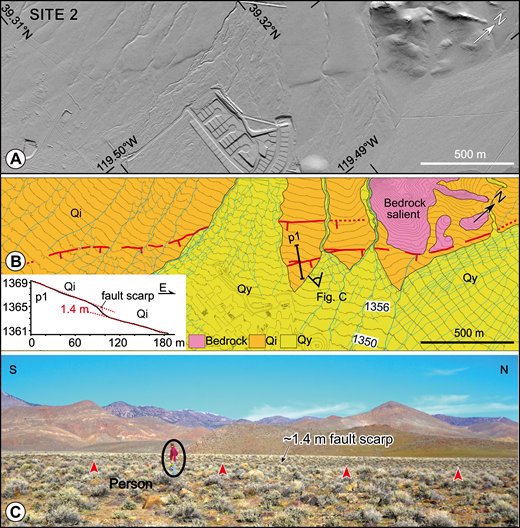 Geographic features along the fault trace at site 2 (location outlined by box in Fig. 3). (A) Lidar (light detection and ranging) hillshade image. (B) Quaternary map showing active fault scarps (red, tick marks on the downthrown side). Topographic profile along p1 in inset shows scarp height of 1.4 m. Contour interval is 2 m. Unit abbreviations as in Figure 3. (C) Photograph illustrates character of scarp in field. Points of red arrowheads located along base of the scarp (perspective of photo is shown in B).
