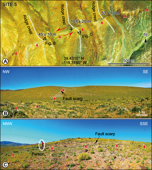 Displaced geomorphic features along the fault trace at site 5. Location outlined by box in Figure 3. (A) Google Earth imagery of the fault trace (red arrows) and displaced ridges (dashed white lines). Nearly linear ridge crests are consistent with left-lateral displacements of ∼45–100 m. (B) Field photograph showing linearity fault trace. (C) Photo of youthful appearing fault scarp of ∼0.5 m height. Points of red arrowheads are placed at base of the fault scarp.
