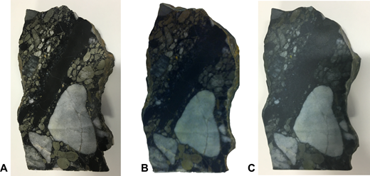(A) Photograph of original rock specimen of Witwatersrand (South Africa) gold-bearing ore rock; (B) rendered image of 3D model generated by the 123D Catch process; (C) final 3D printed model.