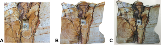 (A) Photograph of original Tasmanian (Australia) rock face showing rock bolt; (B) rendered image of 3D model generated by the 123D Catch process; (C) final 3D printed model. Please also see Interactive Item 1 for a 3D file of the rock-face model.