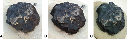 (A) Photograph of original rock on Cable Beach, Broome, Western Australia; (B) rendered image of 3D model generated by the 123D Catch process; (C) final 3D printed model. Please also see Interactive Item 2 for a 3D PDF file of the Cable Beach rock model.