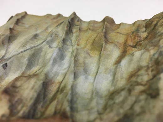 Close-up photograph of the Cullercoats, UK, rock-outcrop printed model illustrating the fine geological detail of rock surface features and texture coloration.
