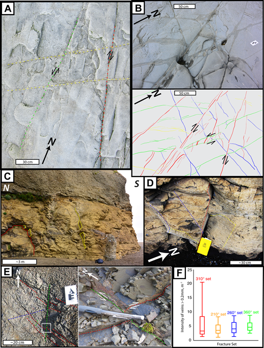 Field photographs showing mode I and II veins, vein sets in Cenozoic strata, and vein intensity plot. (A) Mode II veins from the 360° and 310° sets that show left- and right-lateral separation, respectively, of a vein from the 210° set, station JR62. (B) Photograph (top) and interpretation (bottom) of vein patterns preserved in the Pomeroy Arkose Member near Tuxedni Channel (station JR84, Fig. 2). Note right-lateral and left-lateral sense of shear on 310° and 360° sets, respectively, similar to observations at site JR10 and JR62 (Figs. 6A and 8A). (C) Wide-angle view of late Paleogene(?) strata at site JR66. Note spaced joints that are members of the 310° and 210° sets. (D) Photograph of members of the 310°, 210°, and 260° sets in the lower part of late Paleogene(?) strata at site JR66. Note that vein intensity in late Paleogene(?) rocks is considerably less than in the Mesozoic section. (E) Veins of the 310° and 360° sets, station JR70. Left: view of the outcrop showing the two dominant vein sets at this location. White box shows location of (right), close-up photograph of mode II veins in both the 310° and 360° sets (note change of view direction). Dashed colored lines show vein trace; solid thin lines are parallel to shallowly plunging striations on the vein surfaces. Slickenfibers and steps on the vein surfaces are compatible with left- and right- lateral slip for the 360° and 310° veins, respectively (see Betka et al., 2017, for fault-slip data from the study area). (F) Whisker plot showing intensities (m–1) of veins ≥0.2 mm from all 4 vein sets. The tails mark minimum and maximum intensities, and 1st, 2nd, and 3rd quartiles are shown by boxes. The lower margin of the box represents the 1st quartile, the middle represents the 2nd quartile, and the top of the box represents the 3rd quartile.