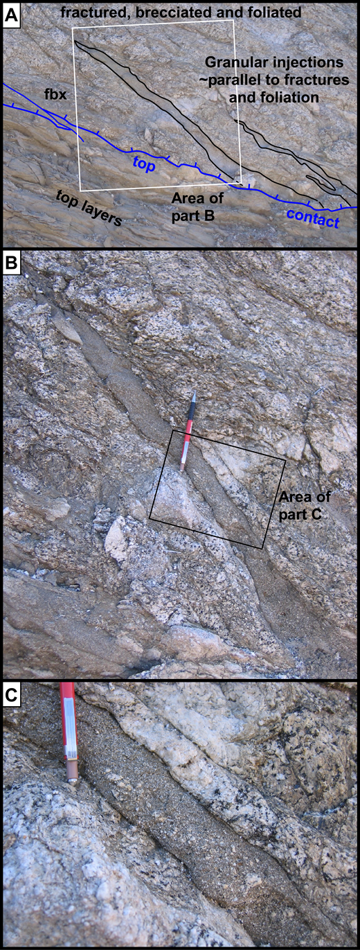 (A) Veins of granular cataclasite in deformed quartz diorite end downward at the top contact, which cuts them. Presumably they were formed along it or in the uppermost layers. View to SW. Box shows area of (B). Foliated breccia—fbx. (B) Lack of shear offset of light-colored aplite vein shows injection into tensile crack. Box shows area of (C); mechanical pencil for scale. (C) Inward-coarsening grain-size sorting suggests fluidized granular flow during injection with higher shear strain (rate?) near vein margins.
