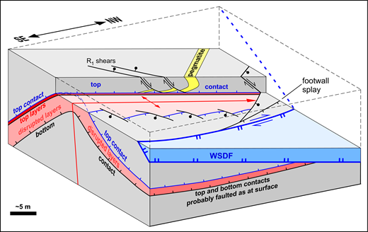 Schematic block diagram, viewed approximately to W, showing the layered cataclasite body and its relationship to features such as the outcrop antiform, faults below the West Salton detachment fault (WSDF), primary Reidel (R1) shears, and the folded pegmatite dikes. Top layers are shown red, and distorted layers are shown pink. Small faults that cut the bottom contact and, probably, the top contact in the subsurface on the NE flank are not shown.