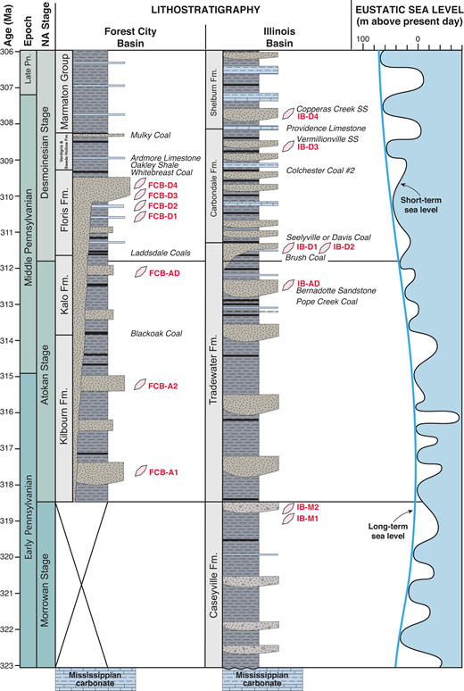 Schematic stratigraphic columns for the Forest City (Anderson and Fields, 2007) and Illinois (Jacobson, 2002) Basins in the study area with stratigraphic positions of samples, key marker beds, and the long- and short-term eustatic sea-level curves (Haq and Schutter, 2008). Standard chronostratigraphy from Ogg et al. (2016) and North American (NA) stages from Heckel and Clayton (2006). SS—sandstone.